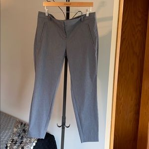 Exact Stretch ankle pants